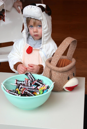 puppy kids costume halloween trick or treat sock monkey pail bag