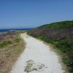 Cape Banks management trail towards Cape Banks (310262)