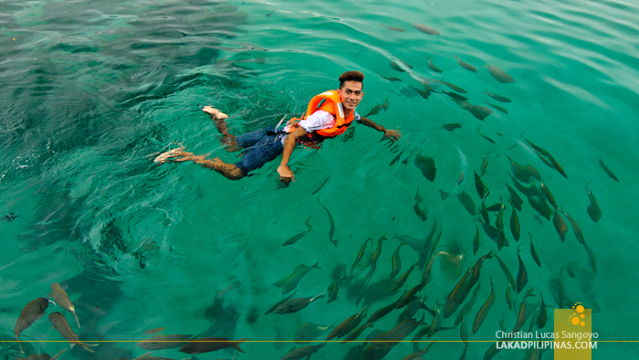 Swimming with the Fishes at the Juag Marine Sanctuary in Matnog, Sorsogon