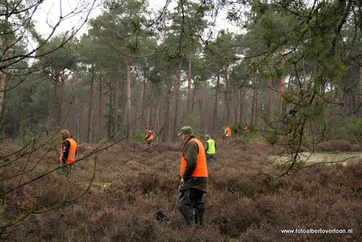 vossenjacht in de Bossen van overloon 18-02-2012 (52).JPG