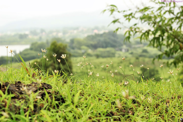 Igatpuri - A Magical place for pure Bliss 1