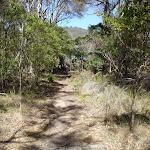 Track down to Bournda Lagoon (105583)