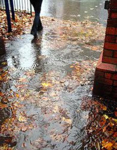 A Cold Rainy November Day