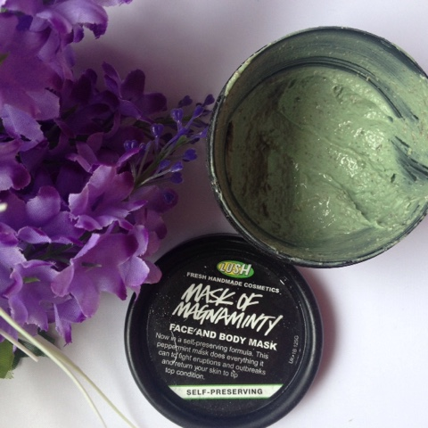 Lush Cosmetics Mask of Magnaminty