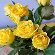 К чему снятся желтые розы?