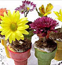 Mother's Day Flowerpot Cupcakes