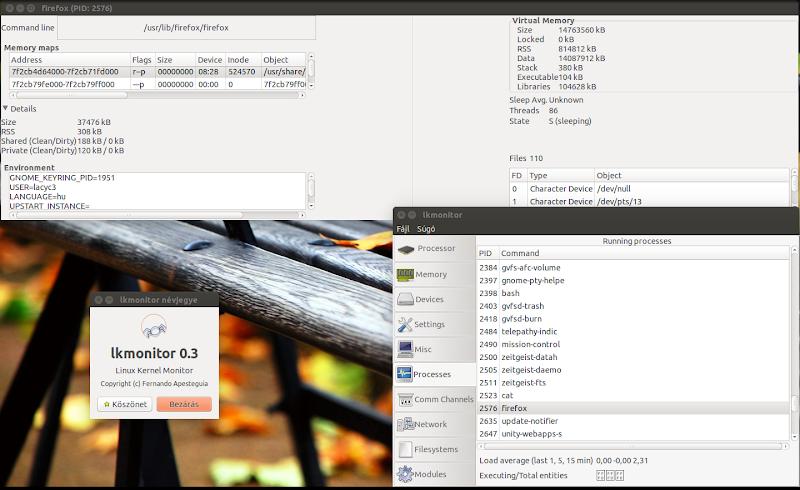 Linux Kernel Monitor