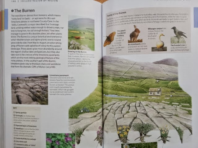 map of the Burren, DK Eyewitness Travel Ireland