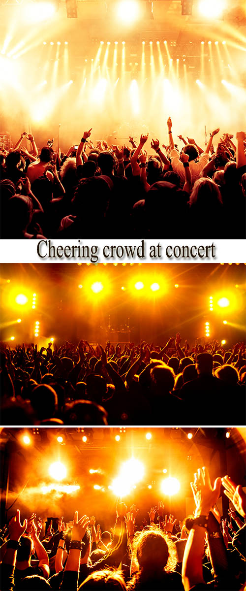 Stock Photo: Cheering crowd at concert