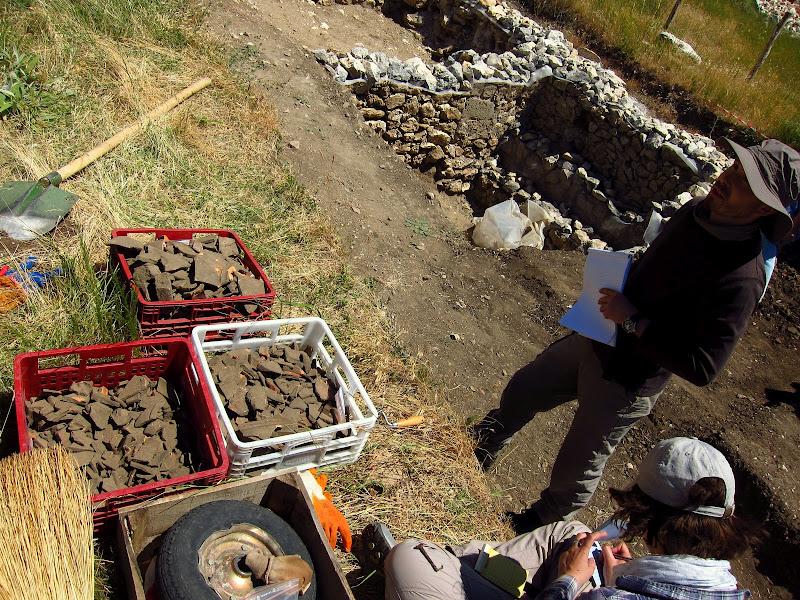 Belgian archaeologist