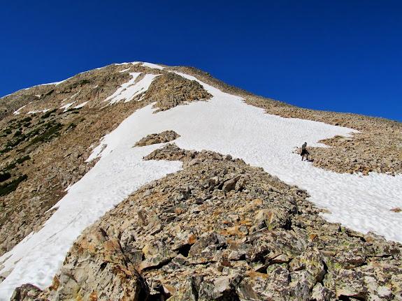 On the northeast ridge of Mt. Watson