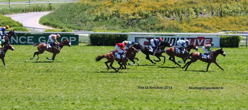 Photos Auteuil le 21-06-2014 IMG_2208