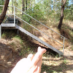 Casuarina link trail stairs (198643)