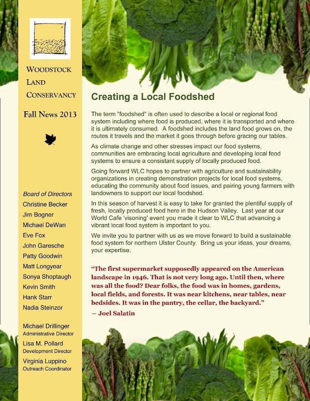 2013 Spring Newsletter pg 1