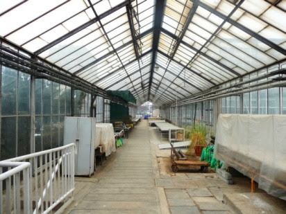 szklarnia greenhouse