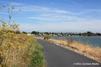 Paved trail next to the shoreline