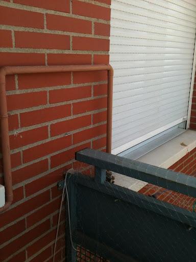 redes - Resumen de ideas para mosquiteras y redes ventanas y balcón para gatos. IMG_2653