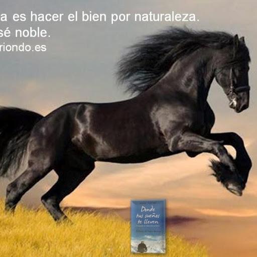 Ines Caballero Photo 14