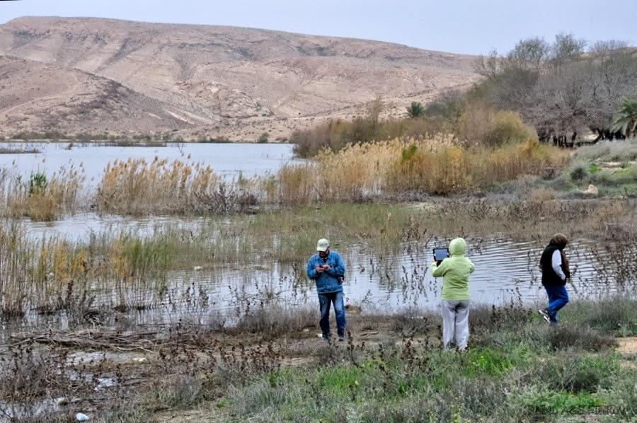 Искуственное озеро возле города Йерухам. Экскурсия гида Светланы Фиалковой.