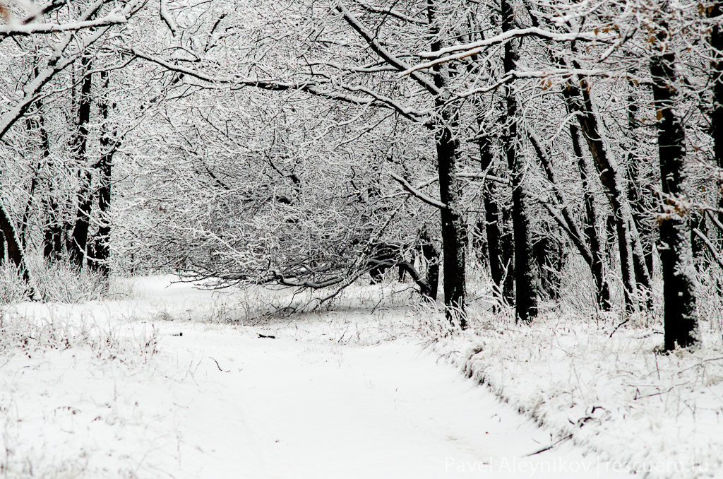 Зима в Торезе. Кошелевка.