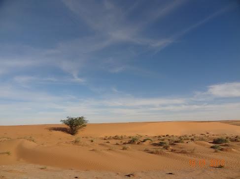 Marrocos e Mauritãnia a Queimar Pneu e Gasolina - Página 7 DSC06103