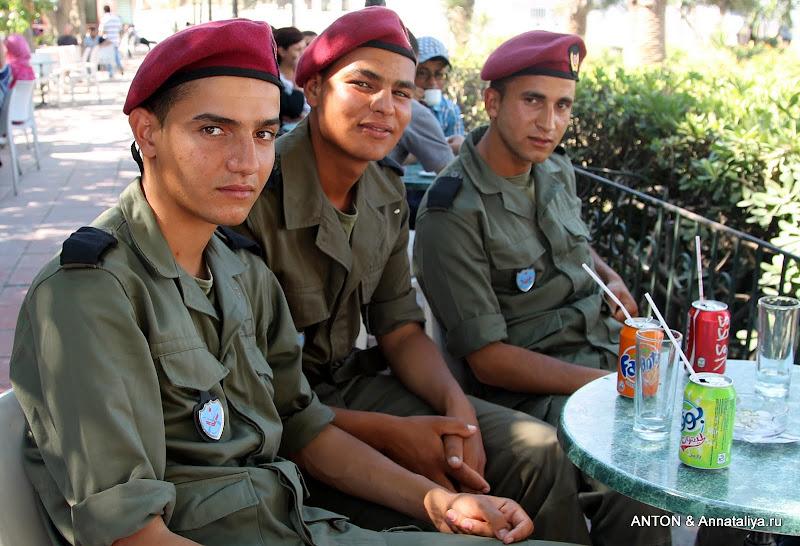 Арабы тунисцы мужчины сексуальные