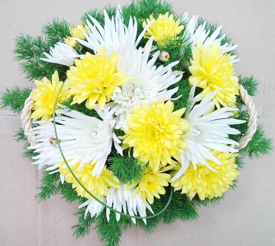 Поздравления к хризантемам