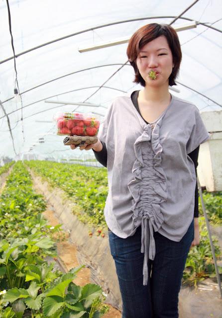 Me and my punnet of fresh Korean strawberries
