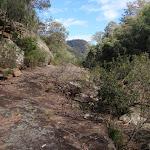 Rock shelf on eastern bank of Erskine Creek (144192)