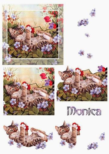 monica-cats4.jpg