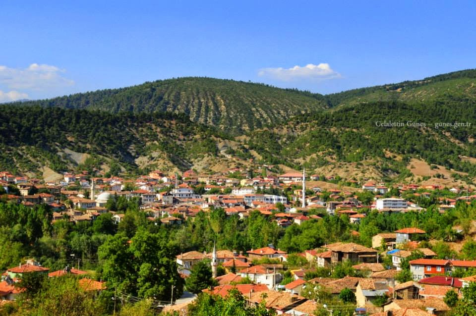 Taraklı  Otelleri, Taraklı Hakkında