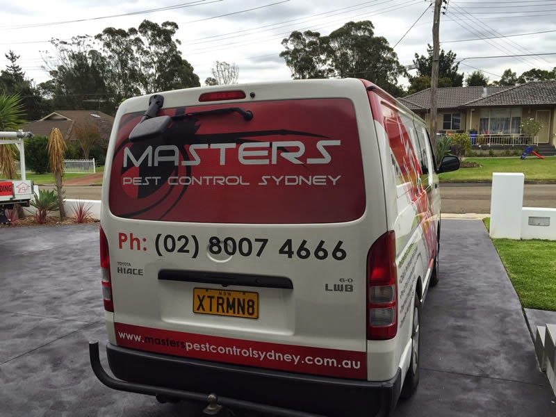 Residential and Commercial Pest Inspection