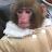 Duncan Parrish avatar image