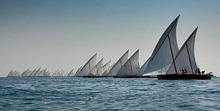 Dubai offshore sailing club and dhows racing on Gulf