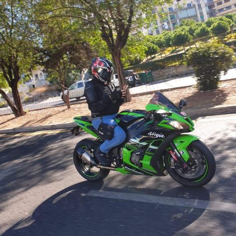 Elie Aoun