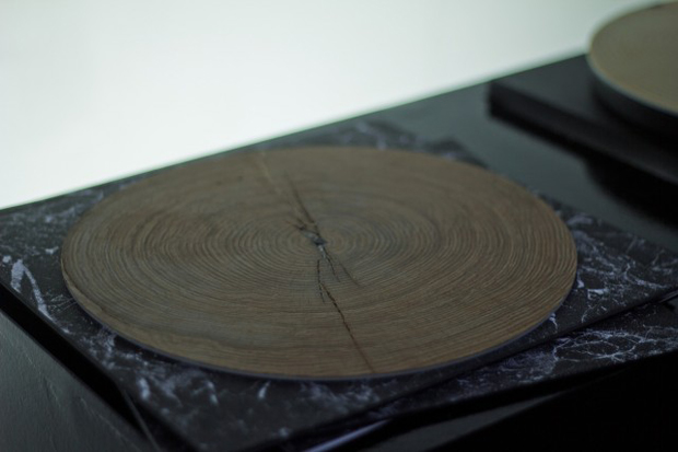 Modified Turntable Plays Slices of Wood