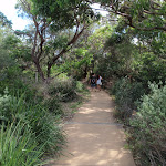 South Head Heritage Trail (255878)