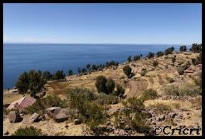 Un mois aux pays des Incas, lamas et condors (Pérou-Bolivie) - Page 2 Titicaca-Taquile1