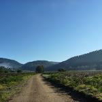 Bicentennial Trail at Behrs Flat (292009)