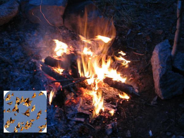картинки огонь
