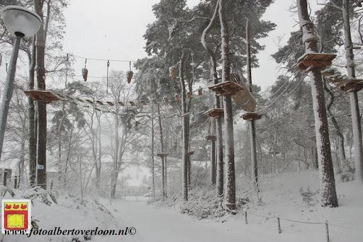 eerste sneeuwval in overloon 07-12-2012  (16).JPG