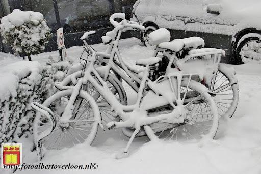 eerste sneeuwval in overloon 07-12-2012  (34).JPG