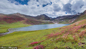 A Dream Land, full of red and pink flowers around the Lake Dudipatsir, Naran Valley Pakistan