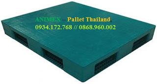 Pallet nhựa mặt bít cao 200mm