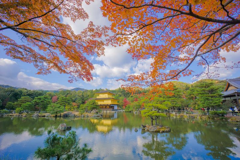 京都 紅葉 金閣寺 写真5