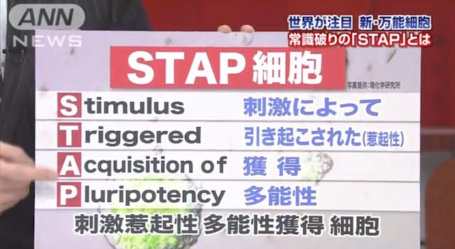 「iPS細胞」より簡単に万能細胞が作れる「STAP細胞」理研など国際研究チームが発表