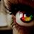 Glenn Latomme avatar image
