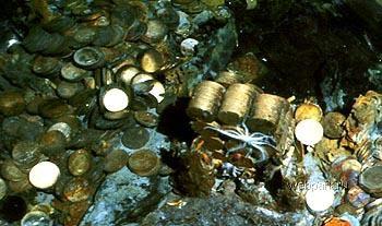 Затонувшие корабли с золотом сколько стоит 20 копеек 1984 года цена