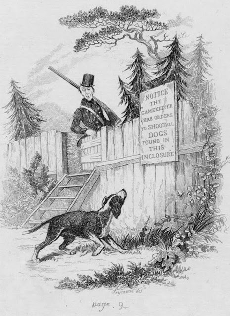 Dibujos e ilustraciones en las obras de Charles Dickens - Robert Seymour. The Sagacious Dog en la novela The Posthumous Papers of the Pickwick Club