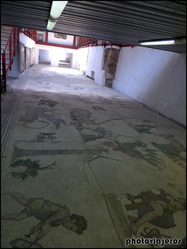 Museo del Mosaico